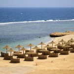 Concorde Modern Beach Resort & SPA Marsa Alam 5