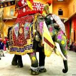 Отдых в Индии, ГОА