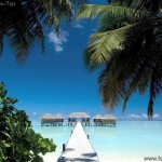 Отдых на Мальдивских островах