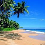 Отдых в Шри-Ланке, Негомбо