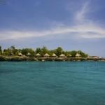 Туры на Ямайку, Негрил